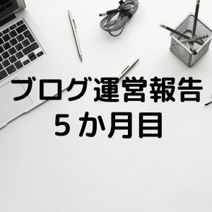 【ブログ初心者】5か月目PV数・収益・記事数公開