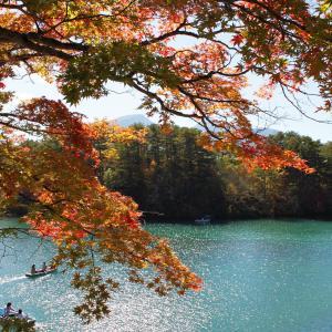 愛知から福島・福島から愛知への行き方!所要時間や運賃を紹介します