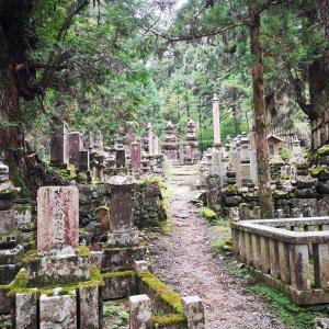 愛知から和歌山・和歌山から愛知への行き方!所要時間や運賃を紹介します
