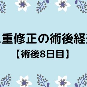 切開修正の術後経過【8日目】