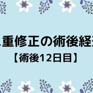 切開修正の術後経過【12日目】