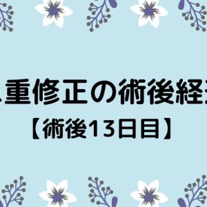切開修正の術後経過【13日目】