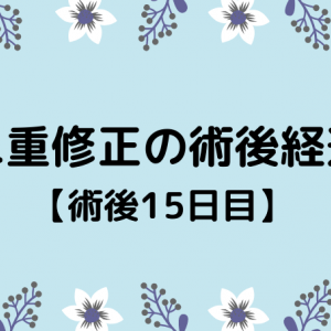 切開修正の術後経過【15日目】