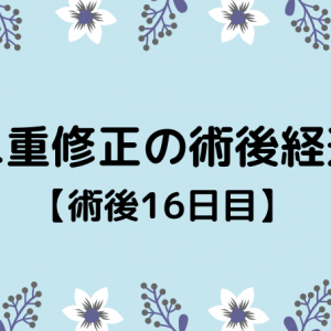 切開修正の術後経過【16日目】