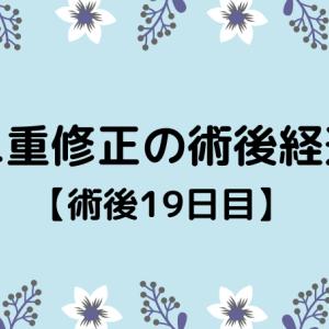 切開修正の術後経過【19日目】