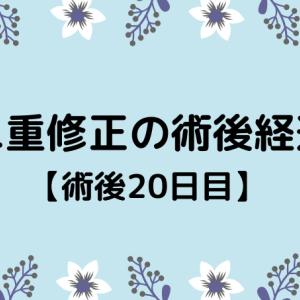 切開修正の術後経過【20日目】