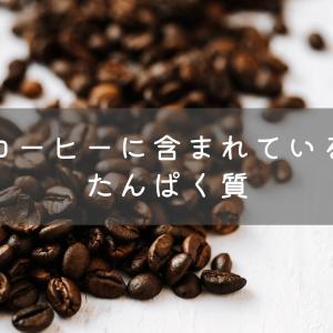 実は入っている!コーヒーに含まれるたんぱく質の量は?