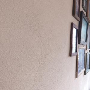 採用して大正解だった珪藻土の壁材