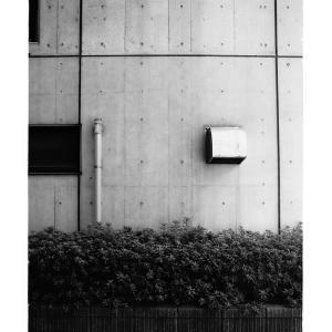 Exposed concrete condominium walls and planting in Tsukiji,Tokyo,Japan