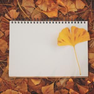 秋の夜長に思うこと