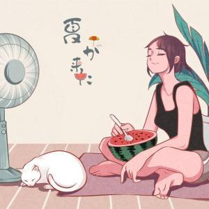 夏が来ていますが、どんなものが必要ですか?