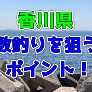 【香川県】大漁!数釣りを目撃した釣場4選!