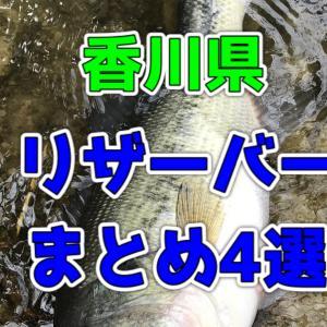 香川県のバス釣りができるリザーバー4選!