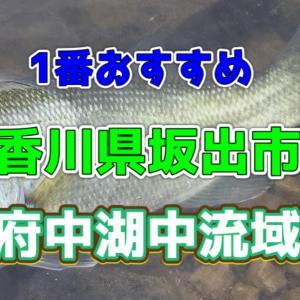 【香川県】府中湖 中流域【バス釣り】