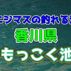 【香川県】もっこく池はニジマスが釣れるため池!