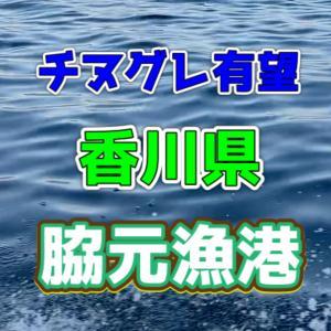 【香川県】脇元漁港【さぬき市】