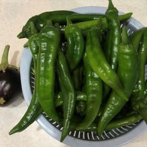 週末の「収穫」と「男料理」