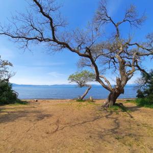 【6月21日(月)閉鎖解除】琵琶湖岸にある公園駐車場の閉鎖が解除されます。