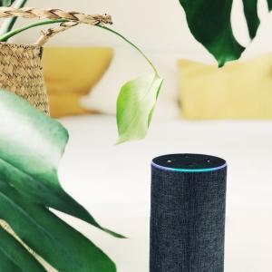 スマートスピーカーを2つ並べて使った結果報告 Amazon Echo Dot vs Google Nest hub