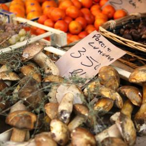 イタリアの秋 一問一答!気候・定番秋グルメ・盛り上がるイベントは?○○の秋ってある?