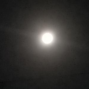 【追記】中秋の名月