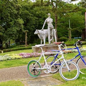 交通災害共済を自転車保険にして節約する方法。How to save money by making bicycle insurance for traffic disaster mutual aid.