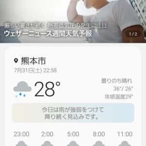 ウヒャー大雨が降って来た!