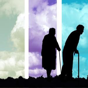 日本は人口の29%が高齢者で世界最高 / 介護職員は全員「公務員」にすべき