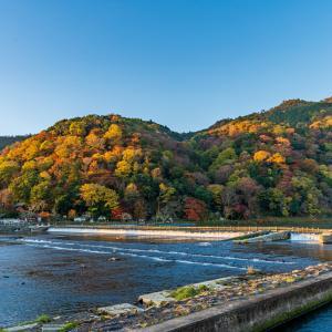 「京都府の世界遺産を巡る観光スポット5選」
