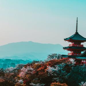 「江戸時代、京にいた天才絵師」