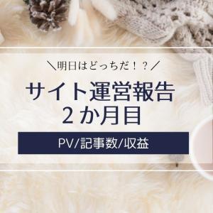 雑記ブログ・サイト運営報告2か月目【PV/記事数/収益】