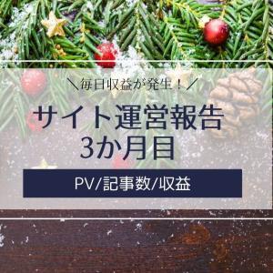 雑記ブログ・サイト運営報告3か月目【PV/記事数/収益】