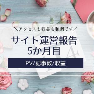 雑記ブログ・サイト運営報告5か月目【PV/記事数/収益】