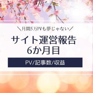 雑記ブログ・サイト運営報告6か月目【PV/記事数/収益】