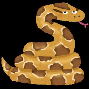 【へび】消えたニシキヘビ、14日に捜索打ち切りも…。現場は混乱、ユーチューバーも多数集結