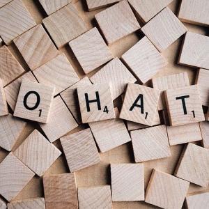 【兵庫】「生きる価値なし」特別支援学級の児童に暴言 小学校教諭を懲戒免職