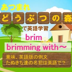 【あつまれ どうぶつの森の英語】brim/brimming with~の意味、覚え方 たぬきち達の英語名は?(英語表現・英会話・英検準1級)【マンガで英語学習】