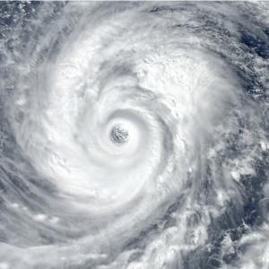「台風の目に飛び込むようなもの」ドネアが語る井上尚弥との戦い