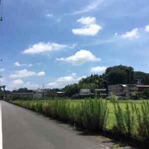 神奈川帰省は無事に終えました。