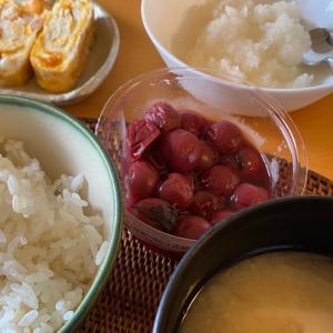 無農薬ビオトープ米を土鍋で炊く