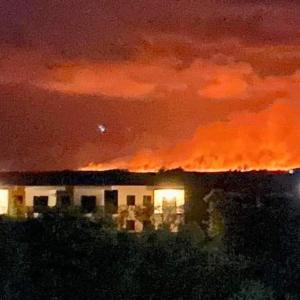 火事のトラウマとホルボッシュの思い出