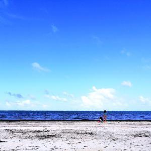 コロナ後の初ビーチ。プエルトモレロスへ