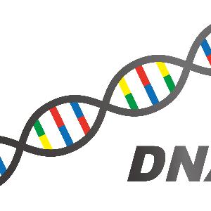 【遺伝子検査】どんな健康法が自分に合っているのか?