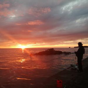 小浜・大飯・高浜を中心とした福井嶺南の釣り情報を発信していきます