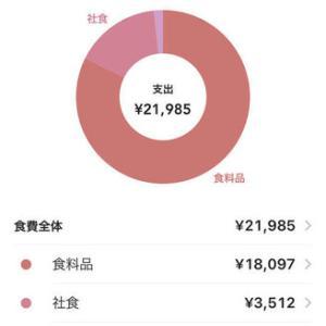 【2021年2月】一人暮らし女子の食費1ヶ月25,000円生活まとめ。