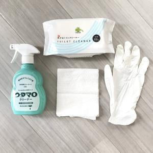【掃除】トイレブラシ断捨離と現在の掃除方法。