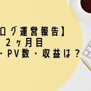 【ブログ運営報告】2ヶ月目の記事数・PV数・収益は?