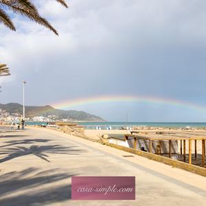 愛犬と海岸のお散歩&虹を見ました