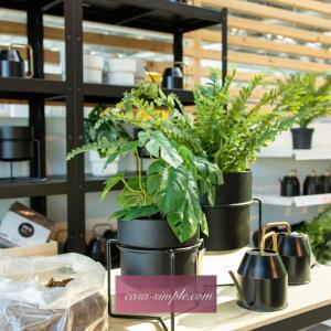 "IKEAで観葉植物と新商品スタンド付き鉢カバー""ゴジバール""を買いました♪(グリーン中心のお買い物)"
