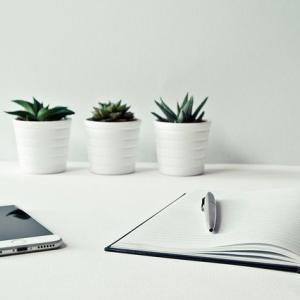 ブログが10倍読みやすくなる文章の書き方のコツ20個【初心者向け】